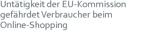 Untätigkeit der EU-Kommission gefährdet Verbraucher beim Online-Shopping